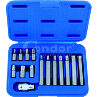 Socket Bit Set 15 pcs. 1/2'' tx-star T20-55 - socket_bit_set,_15_pcs.,__tx-star_t20-55.png